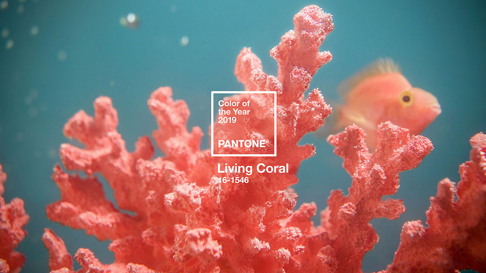 living-coral-2019